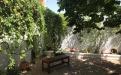 Casa amb jardí (Tere)